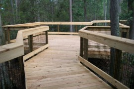 Morningside Nature Center Center Cypress Dome Boardwalk