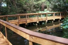 Santa Fe College Zoo Boardwalk