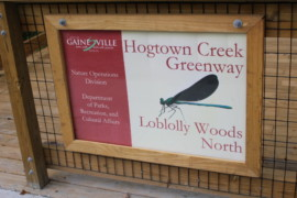 Loblolly Nature Park Boardwalk
